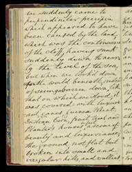 Travel journal of Sir H. W. Martin -Page 67V